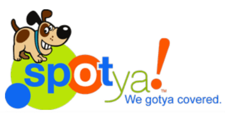 Spotya payday loan connection service review
