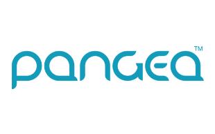 Pangea Money Transfer review